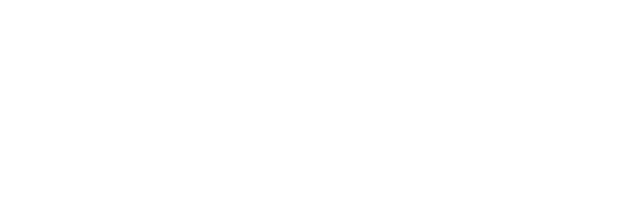 brother_del_futuro