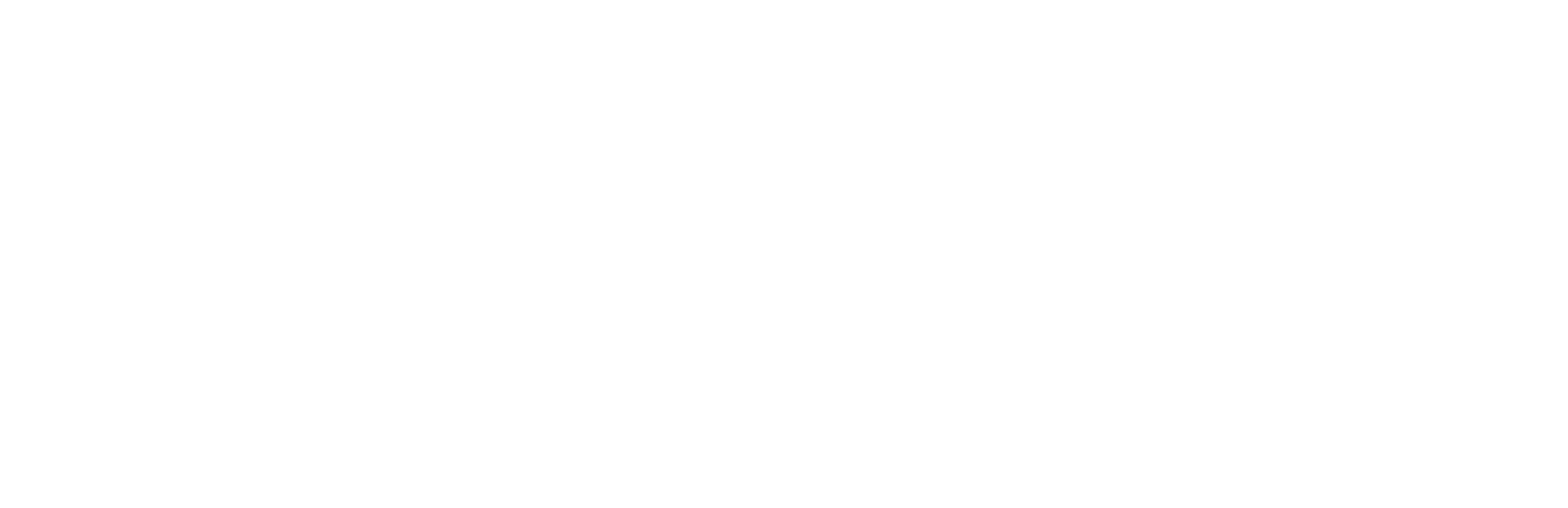 virtual_brothers